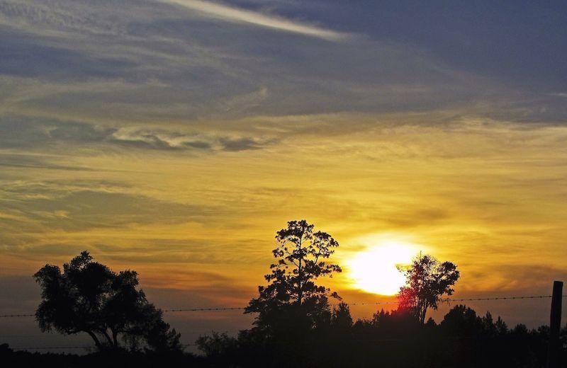 SunsetEM3BearCreekRd_9262