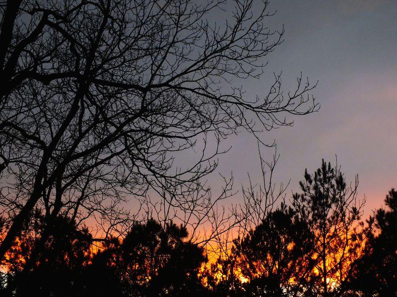 SunsetEMFebFuji1678