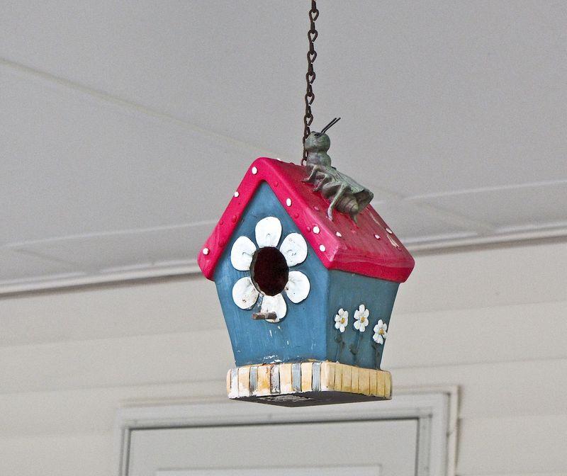 BirdhouseEM2FrontPorch_0513